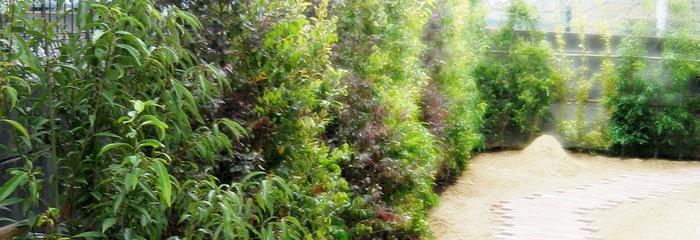 カラフルな混ぜ垣の庭