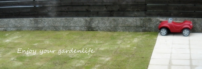 家族で楽しむ芝生とデッキの庭