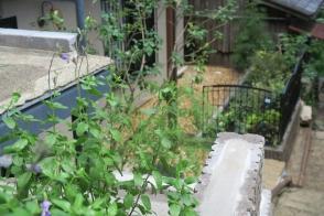 石調インターロッキングブロックのエクステリアリフォーム写真
